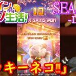 オンラインカジノ生活SEASON3-Day18-【JOYカジノ】