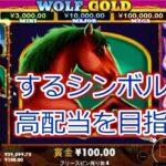 【オンラインカジノ】人気スロットウルフゴールド実践!目指せ高配当!【WOLF GOLD】