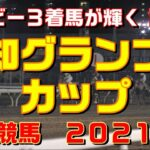 報知グランプリカップ【船橋競馬2021予想】ダービー3着馬が輝く!?