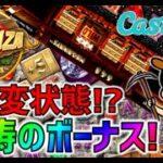 【「カスモ」カジノ】「ボナンザ」確変状態!?怒涛のボーナス!