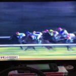 ジャニグチの競馬実況ライブ【京都牝馬ステークス・ダイヤモンドステークス】『もしたら』シリーズ