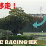 不能移走的大樹!東京競馬場的魔之第三彎道,連日本名駒「無聲鈴鹿」都躲不過!|日本賽馬特輯|賽馬解說