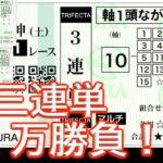 【競馬】狙いは100万!三連単1R20万勝負!!
