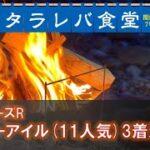 【競馬×焚き火】11人気◎ミニーアイル激走に感謝!【覆面馬主7号的競馬回顧】