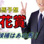 浦和競馬場 桜花賞2021 徹底予想 南関東競馬牝馬クラシック一冠目