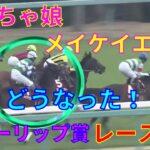 【競馬】チューリップ賞2021レース結果 武豊騎手とメイケイエールはどうなった!?2番人気はタガノディアーナ 3番人気はエリザベスタワー