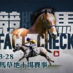 賽馬直播 競馬Fact Check Live 直播2021-03-28 十場HKJC香港賽馬會沙田草地日馬 即場貼士 AI模擬賽果 排隊馬   蘋果日報 Apple Daily