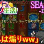 オンラインカジノ生活SEASON3【Day38】