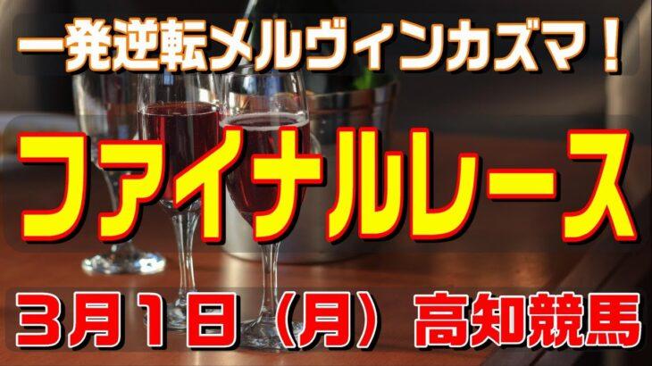 ファイナルレース【3月1日(月)】高知競馬予想