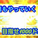オンラインカジノ〜目指せ1000ドル