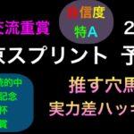 【競馬予想】 地方交流重賞 東京スプリント 2021 予想