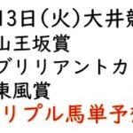 【大井競馬トリプル馬単予想】山王坂賞・ブリリアントカップ・東風賞【南関競馬2021年4月13日】