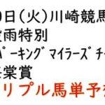 【川崎競馬トリプル馬単予想】穀雨特別・スパーキングマイラーズチャレンジ・海棠賞【南関競馬2021年4月20日】