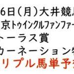 【大井競馬トリプル馬単予想】東京トゥインクルファンファーレ賞・トーラス賞・カーネーション特別【南関競馬2021年4月26日】