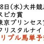 【大井競馬トリプル馬単予想】スピカ賞・東京プリンセス賞・クリスタルナイト賞【南関競馬2021年4月28日】