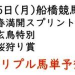 【船橋競馬トリプル馬単予想】春満開スプリント・玄鳥特別・桜狩り賞【南関競馬2021年4月5日】