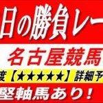 名古屋競馬🔥勝負レース 名古屋5R🔥詳細予想【印で1.2.3着独占多々あり!!】