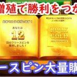 【オンラインカジノ】絵柄増殖が高配当のカギ!フリースピン大量購入!【BOOK OF GOLD】