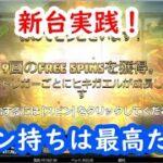 【オンラインカジノ】新台実践!絵柄変換で勝利を導け!【FIRE TOAD】