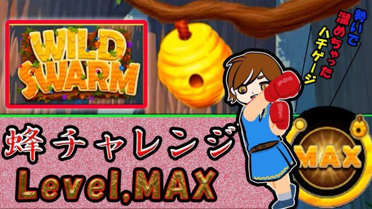 【ワイルドスワーム】蜂ゲージMAXまで終われない!!爆発まであと・・・【レオベガス】