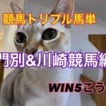 競馬WIN5こうめ川崎門別トリプル馬単