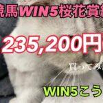 競馬WIN5桜花賞週235,200買ってみた
