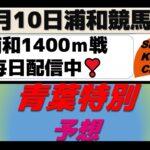 【競馬予想】青葉特別2021年5月10日 浦和競馬場