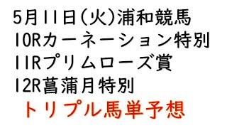【浦和競馬トリプル馬単予想】カーネーション特別・プリムローズ賞・菖蒲月特別【南関予想2021年5月11日】