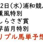 【船橋競馬トリプル馬単予想】薫風特別・しらさぎ賞・早苗月特別【南関競馬2021年5月12日】