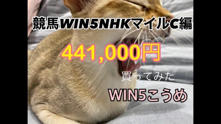 競馬NHKマイルカップ週WIN5¥441,000買ってみた