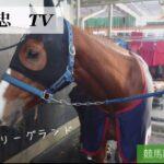 【高橋義忠TV】競馬開催の土日編