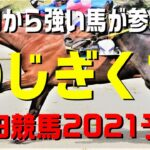 のじぎく賞【園田競馬2021予想】ニジイロVS地元勢