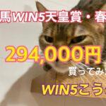 競馬WIN5天皇賞・春編¥294,000買ってみた