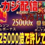 【オンラインcasino】5万円STARTで25000倍で許してやる配信@nonicom『ノニコム』