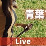 【競馬ライブ配信】青葉賞といえば!競馬女子の実況はこちらです!ウマ娘好きもこちらです!