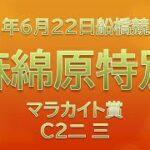 【船橋競馬予想】麻綿原特別、他10R・12R【2021年6月22日】