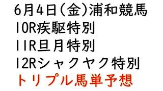 【浦和競馬予想】旦月特別他10R・12R【トリプル馬単2021年6月4日】