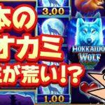 ギャンブル台!日本狼!【オンラインカジノ】【10bet Japan】【HOKKAIDO WOLF】
