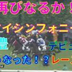【競馬】武豊騎乗のマイシンフォニーのデビュー戦どうなった!?1番人気アライバル 3番人気フェニックスループ  マイラプソディの妹