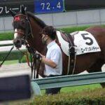 2021 阪神競馬場の2歳新馬戦 テーオーコンドルが馬を追いかけるも輪乗りの場所で確保!! 現地映像