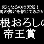 【競馬予想】帝王賞2021【大根おろし】
