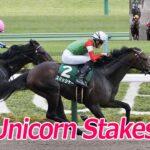 20210620 東京競馬 第26回ユニコーンS(G3) スマッシャー 일본 도쿄경마장 유니콘 스테익스(Unicorn Stakes) 스매셔(Smasher) 낙마사고 발생