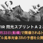 【船橋競馬予想】閃光スプリント2021┃トリプル馬単対象3レース