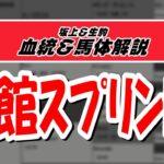 【2021函館スプリントS】元競馬記者と血統評論家の重賞血統談義!!!