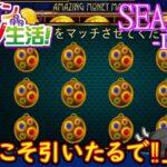 オンラインカジノ生活SEASON3【Day79】