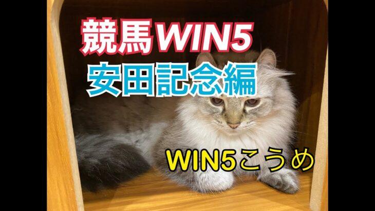 競馬WIN5安田記念週