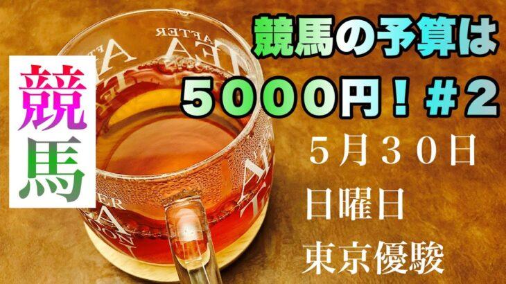 【競馬】競馬の予算は5000円!#2 『ダービーウィーク』