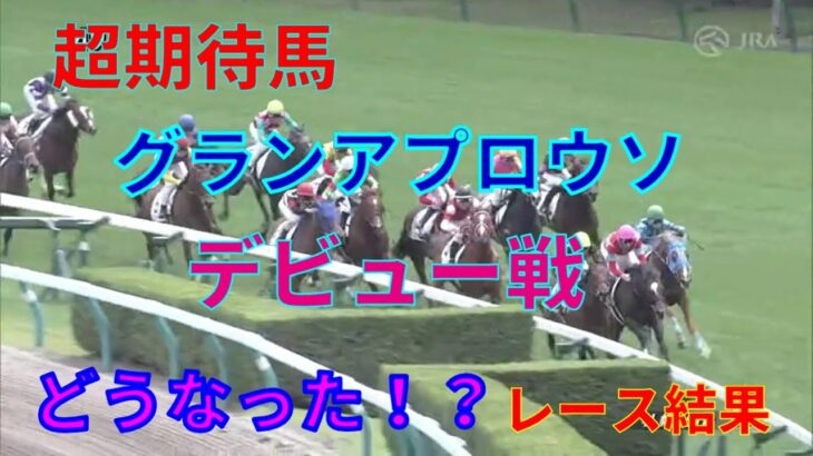 【競馬】期待馬グランアプロウソが武豊騎乗でデビュー!新馬戦の結果はいったいどうなった!?