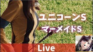 【競馬ライブ】おみくじで大吉!みんなで競馬を楽しもう(^^)/