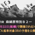 【船橋競馬予想】マラカイト賞・麻綿原特別・C2┃トリプル馬単対象3レース予想